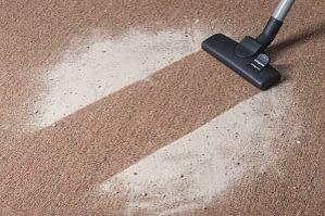 carpet being vacuumed