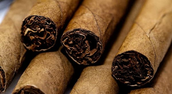How to Buy a Good Humidor for Cigars