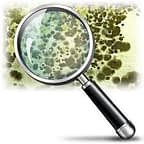 mold and magnifying glass